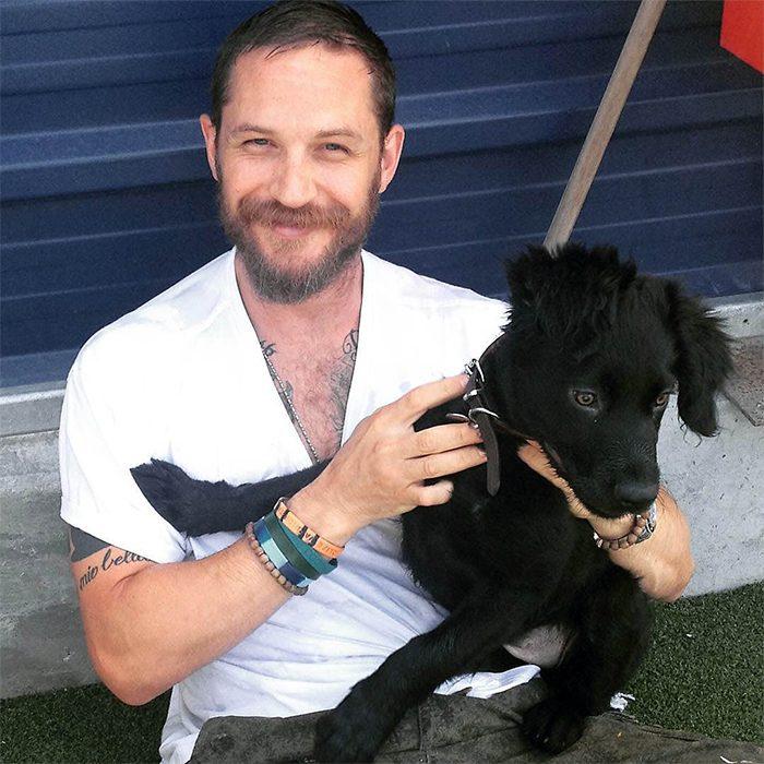 hombre con camisa blanca jugando con un perro