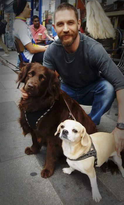 chico posando con dos perros