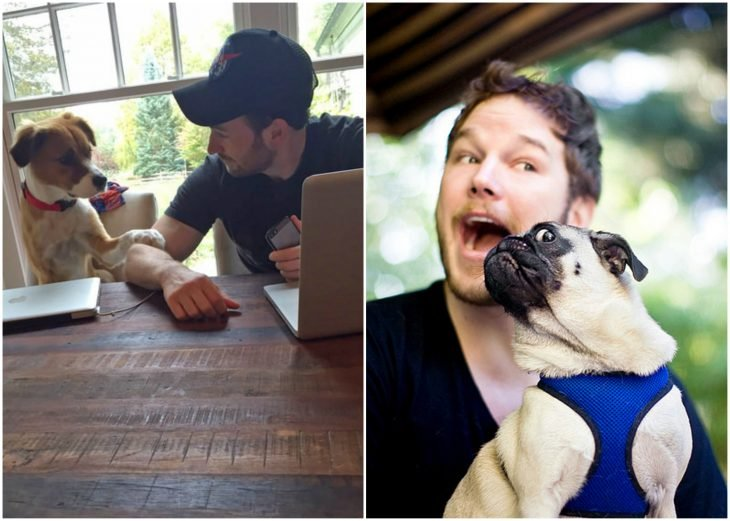 chicos jugando con perros