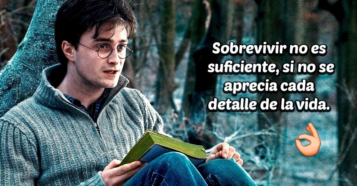 20 Lecciones de vida que todas aprendimos de los personajes de Harry Potter