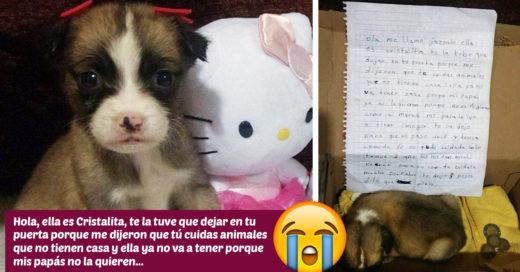 Niña tuvo que abandonar a su perrita y dejó una nota explicando sus motivos, ¡te partirán el corazón!