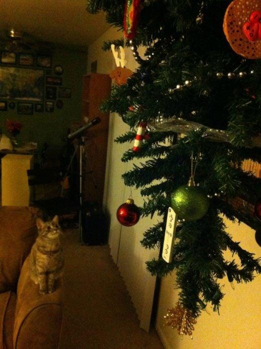 arbol de navidad al revés