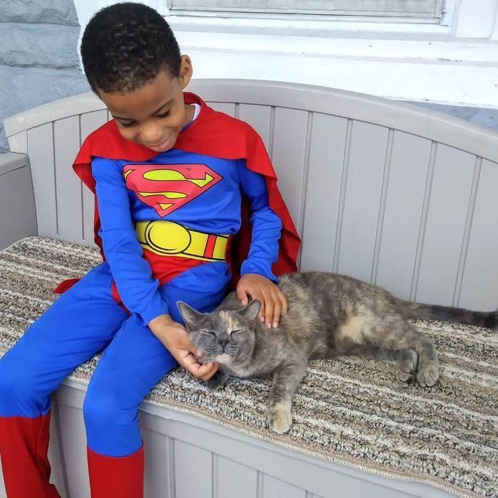 niño cuidando un gato