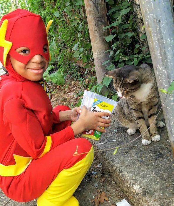 niño alimentando a un gato
