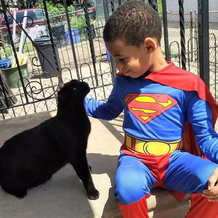 niño sentado con un gato