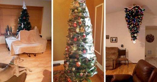 Madres que protegen árboles navideños de sus traviesas mascotas; las sus creaciones son lo más divertido