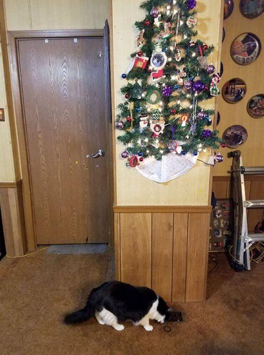 arbol de navidad en la pared pegado