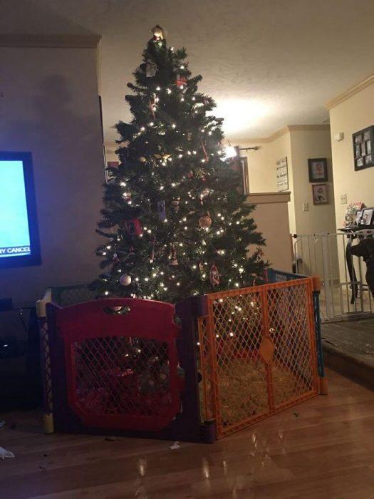 arbol de navidad con valla