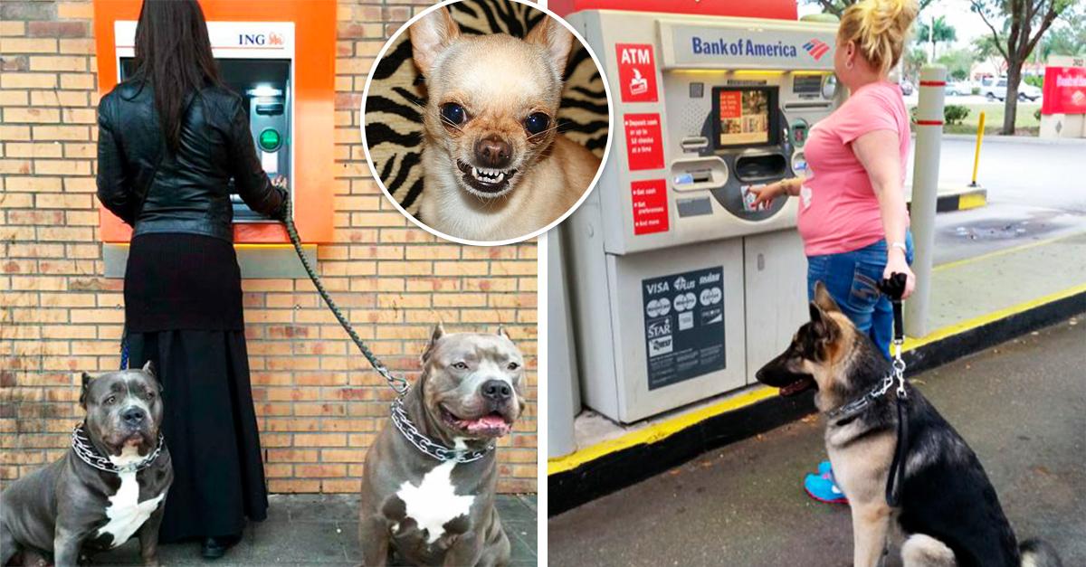 12 Personas que encontraron la mejor defensa para usar un cajero automático