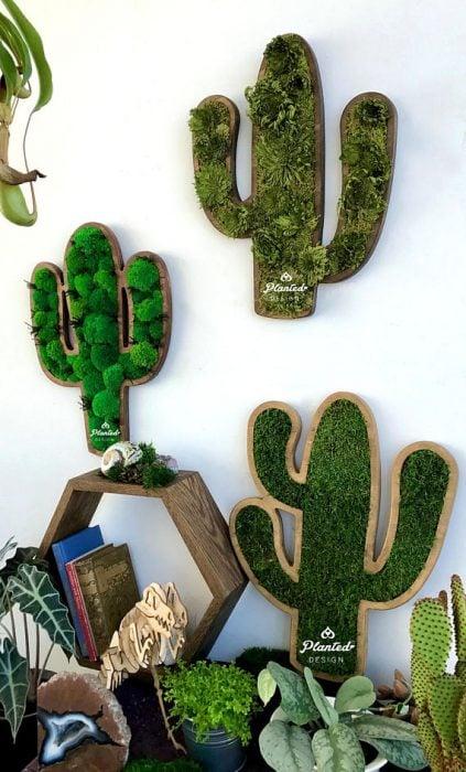 Cactus de madera con musgo
