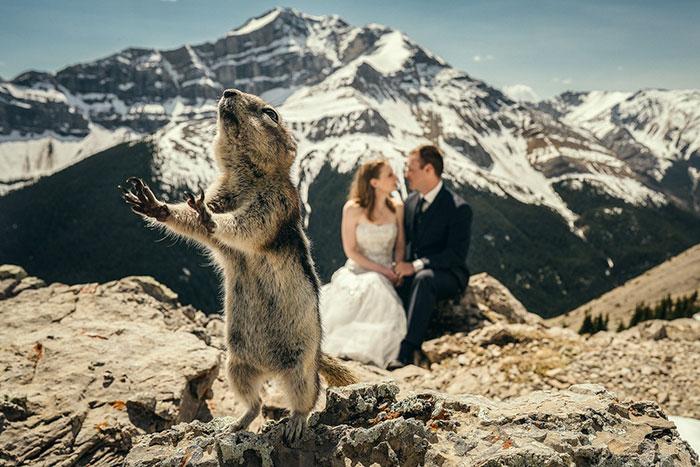 funny wedding photoboom
