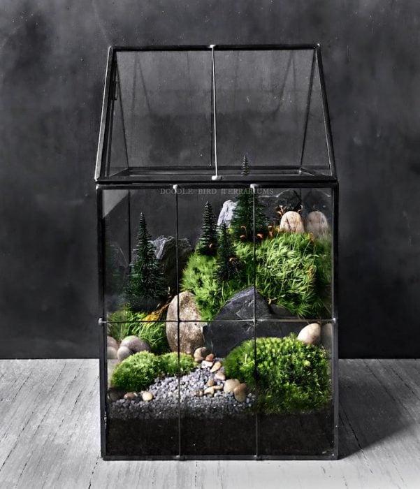 Terrario de cristal