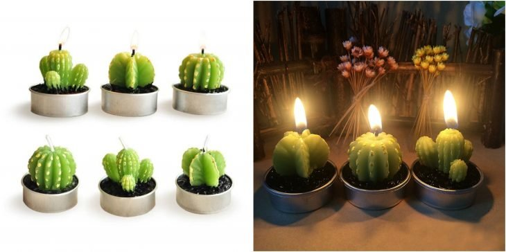 velitas de cactus