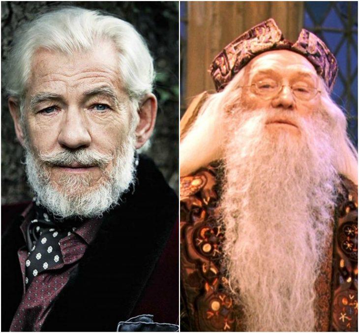 Ian McKellen - Dumbledore