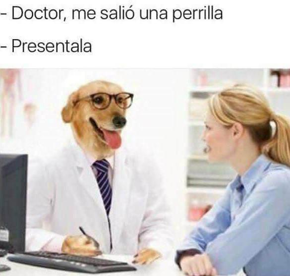 Mejores memes - doctor perro - doctor, me salió una perrilla,  preséntala