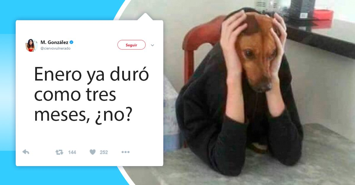 14 Divertidos tuits que entenderás si notaste que enero del 2018 duró más que DEMASIADO