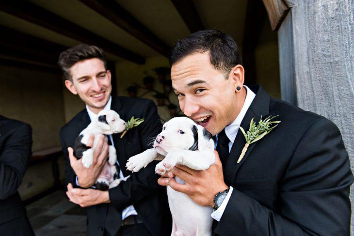 Pareja que adoptó a una camada de cachorros jugando con ellos el día de su boda