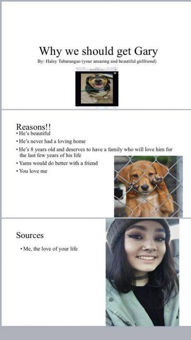 Presentación de una chica que convenció a su novio de adoptar a un cachorro