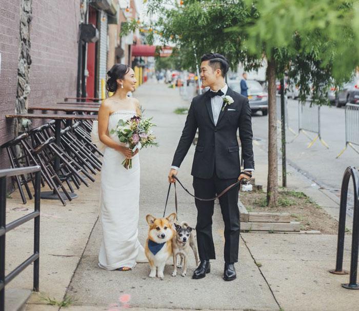 Pareja el día de su boda pasenado a sus perros