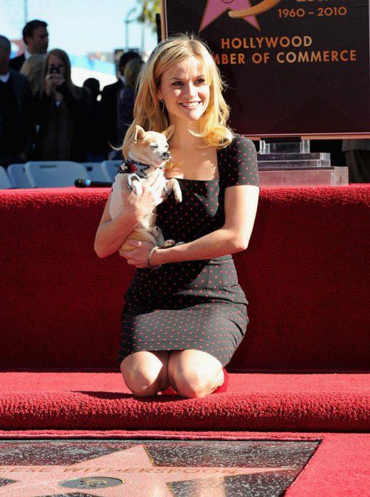chica cargando a un perrito chihuahua