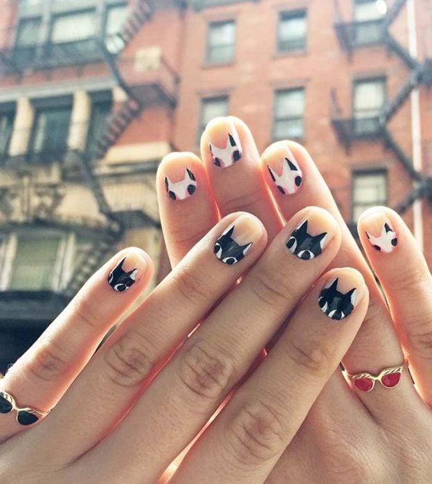 manos con uñas decoradas en forma de gato