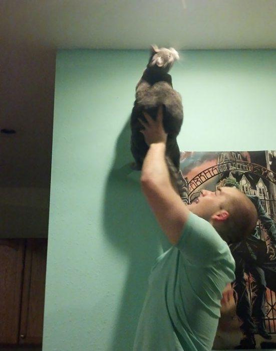 Chico sosteniendo un gato para que se coma los insectos