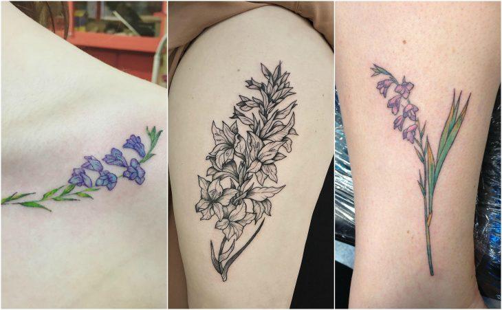 gladiolas mes de nacimeinto flor agosto