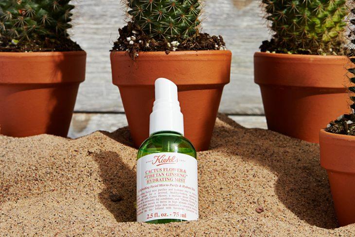 rociador verde entre arena y macetas de cactus