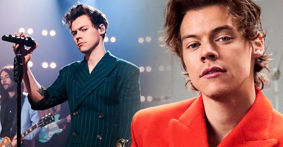 Harry Styles tendrá una serie basada en su vida