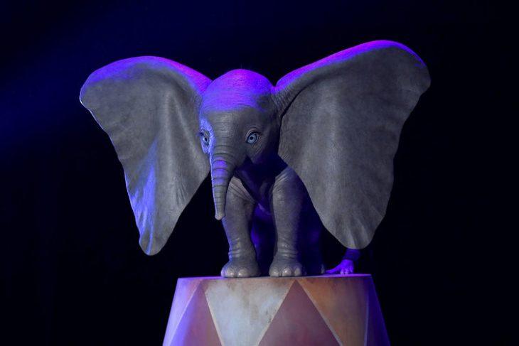 elefante pequeño mecánico