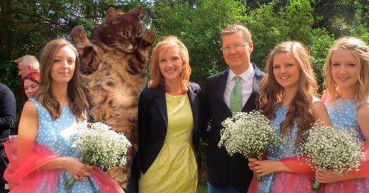 Chica reemplaza a su exnovio en las fotos familiares con su adorado gatito
