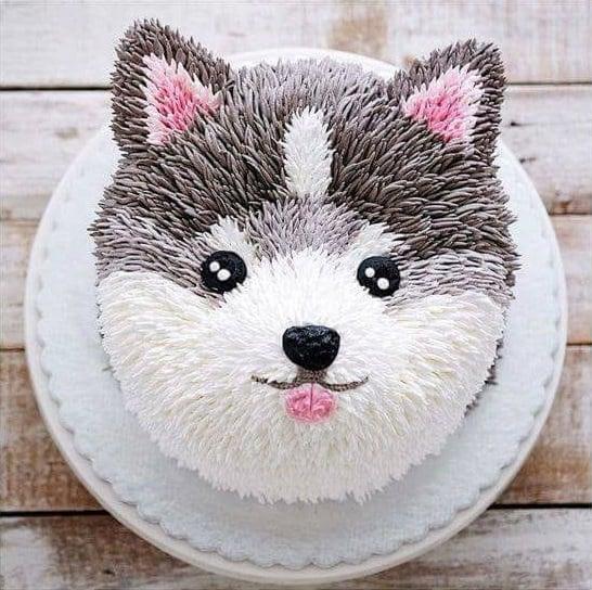 pastel de perrito husky