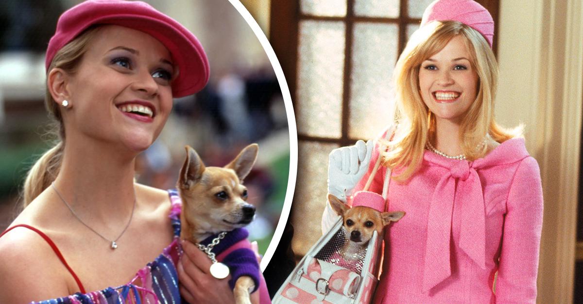 Reese Whiterspoon será Legalmente Rubia por tercera ocasión