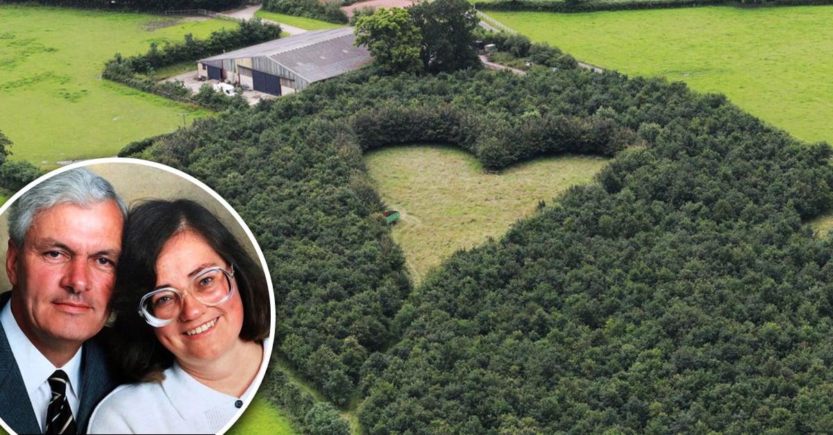 Este hombre plantó cientos de árboles en honor a su difunta esposa