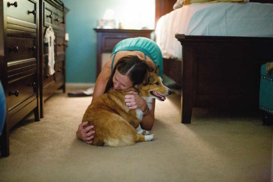 Cachorro corgui siendo abrazao por su dueña