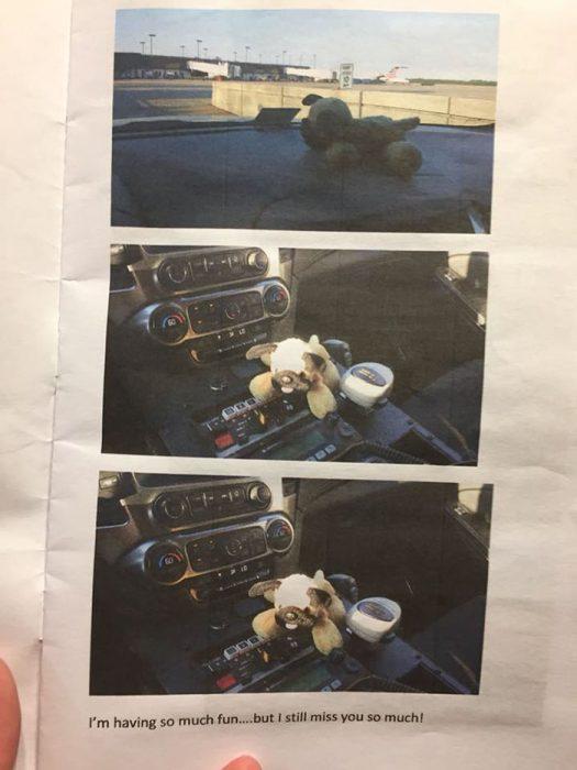 fotografia de peluche en hoja de papel