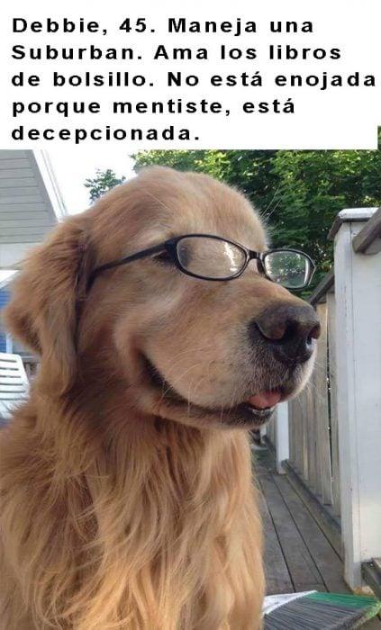 perro labrador con lentes y frase arriba