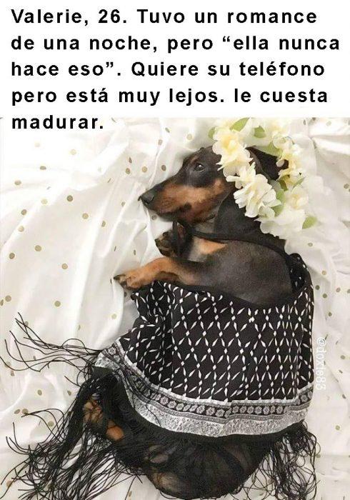 perro con corona de flores acostado en una cama