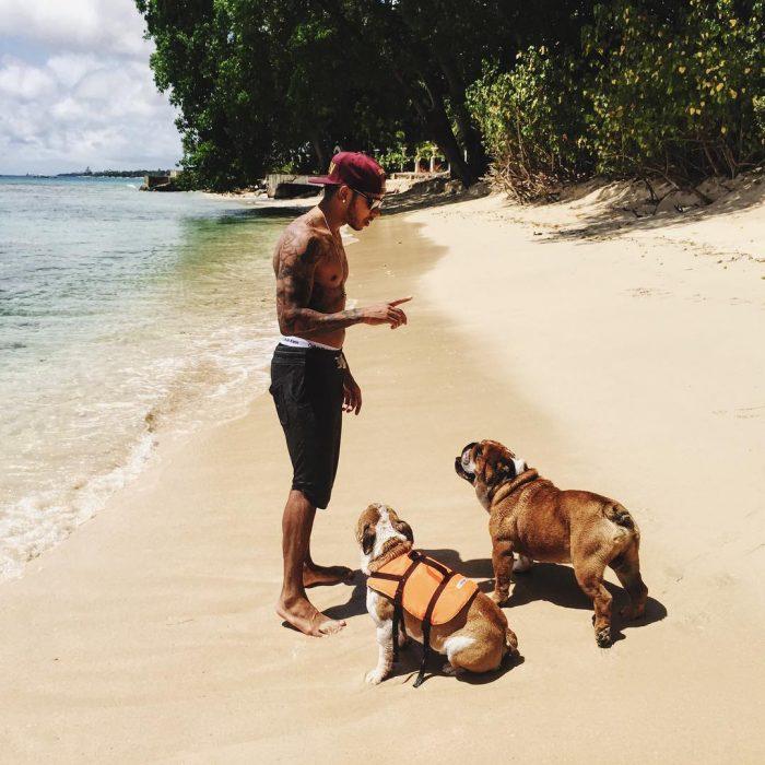 chico paseando en la playa con sus perros