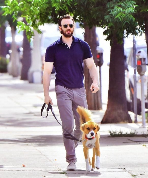 chico paseando a su perro