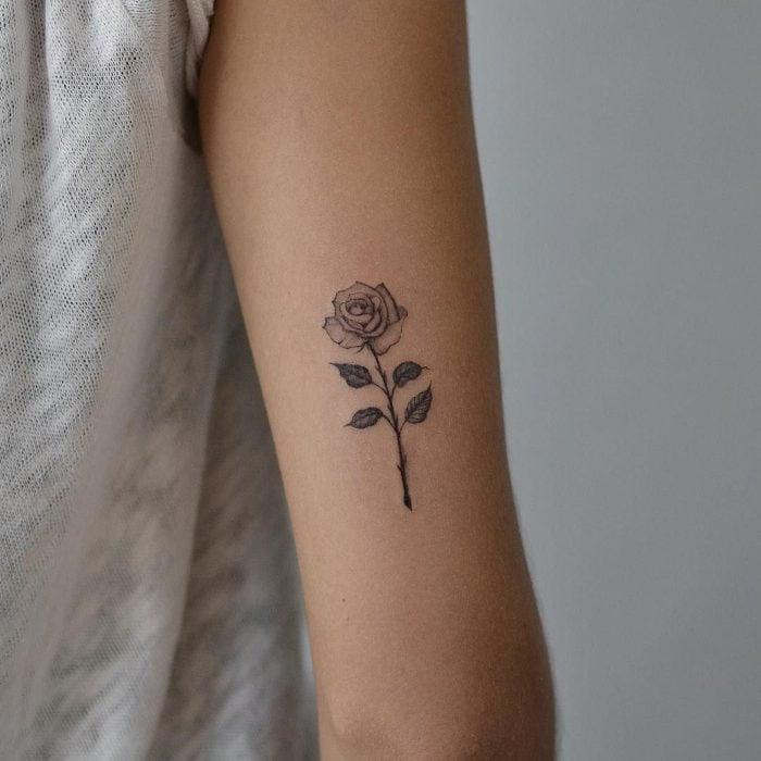 rosas pequeño en el brazo