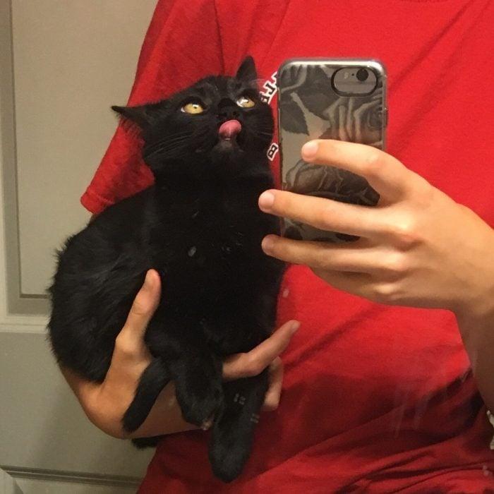 Selfie con gatito negro