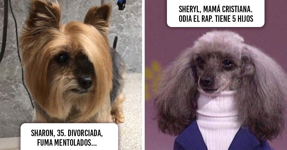 14 Inconfundibles personalidades que Internet recreó con simpáticos perritos