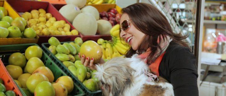 Mujer sosteniendo a un perro mientras están comprando naranjas en un mercado