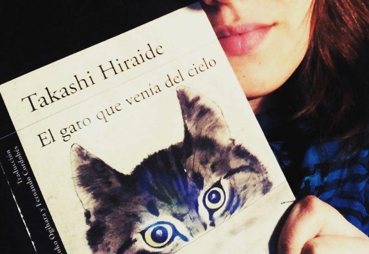 Portada del libro El gato que venía del cielo
