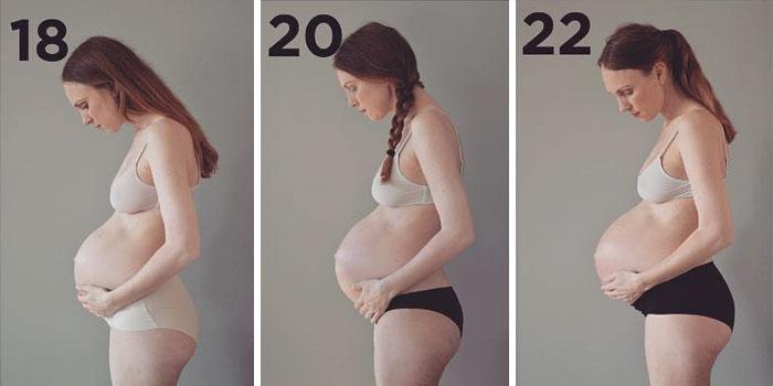 Línea del timpo del progreso de embarazo de una mujer