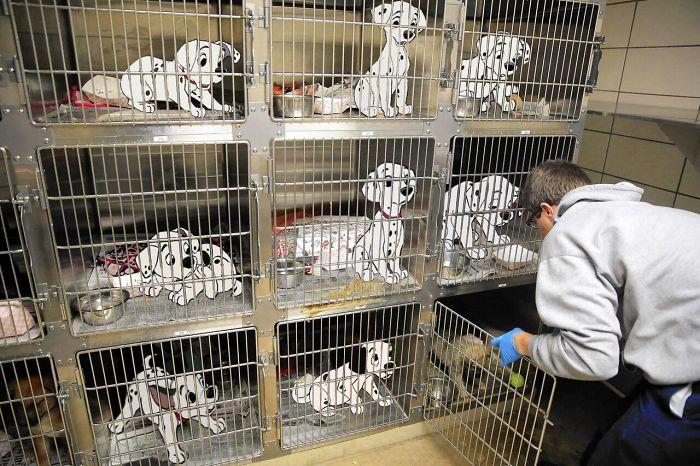 Perros de 101 dalmatas en pequeñas jaulas