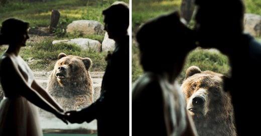 La reacción de este oso ante una pareja casándose en el zoológico es lo mejor que verás el día de hoy