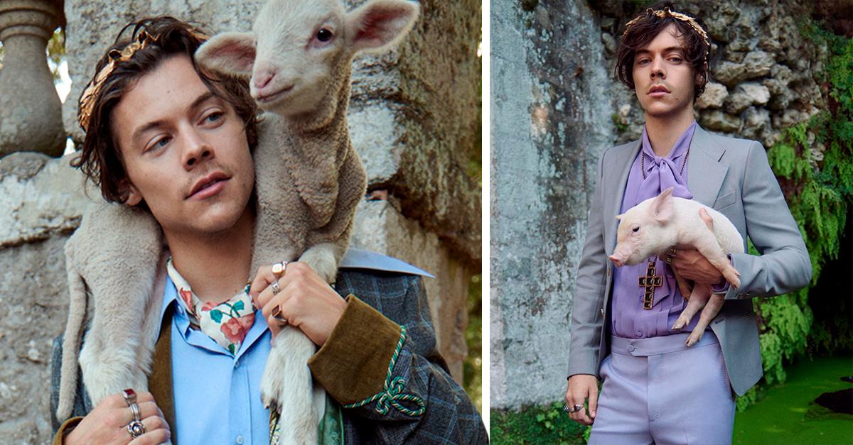 Harry Styles muestra su lado más tierno jugando con animales de la granja
