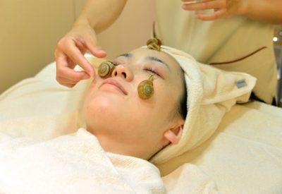 Baba de caracol para cuidar la piel